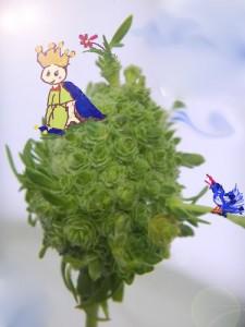 星の王子様