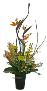 ストレリチアとボダイジュの葉のアレンジ